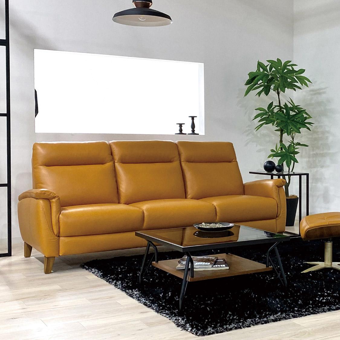 sofa09